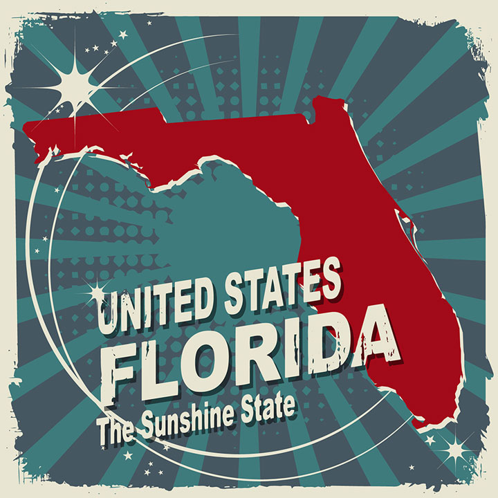 abstract florida map
